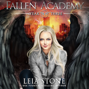 Year Three audiobook by Leia Stone